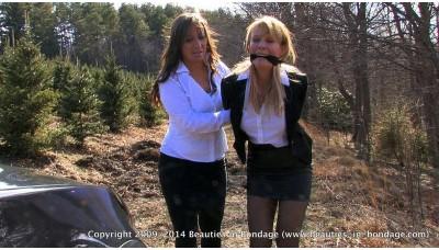 Office Rivals (WMV) - Amber Wells & Lily Anna